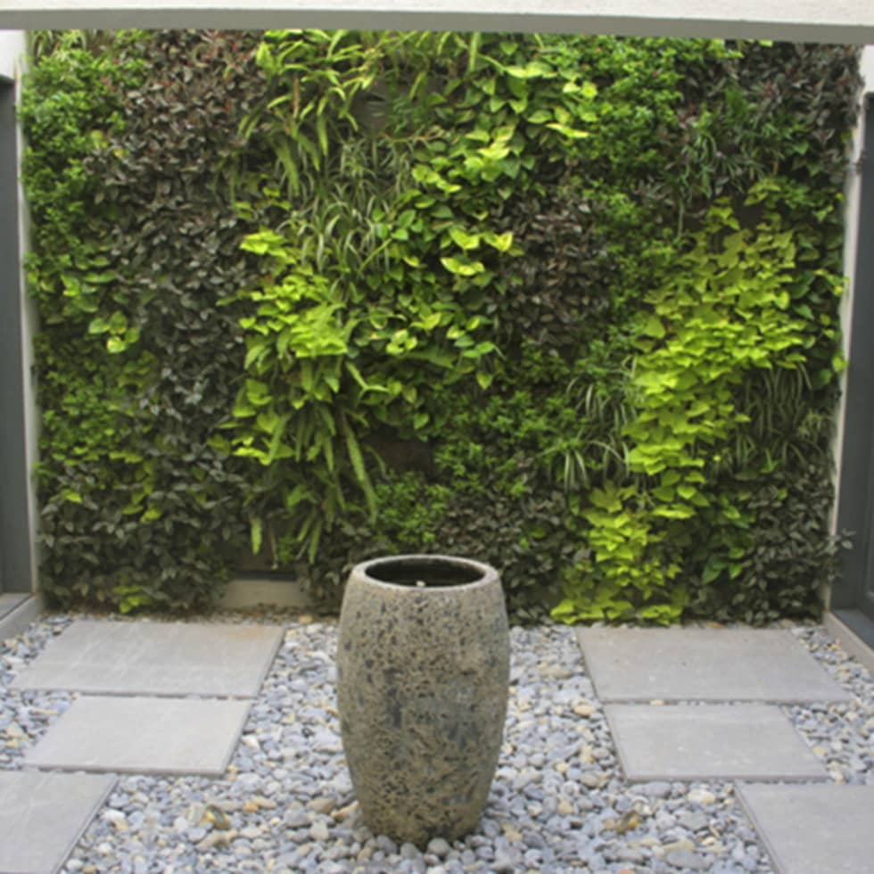 Jardines verticales: Jardín de estilo  de CONILLAS - exteriors