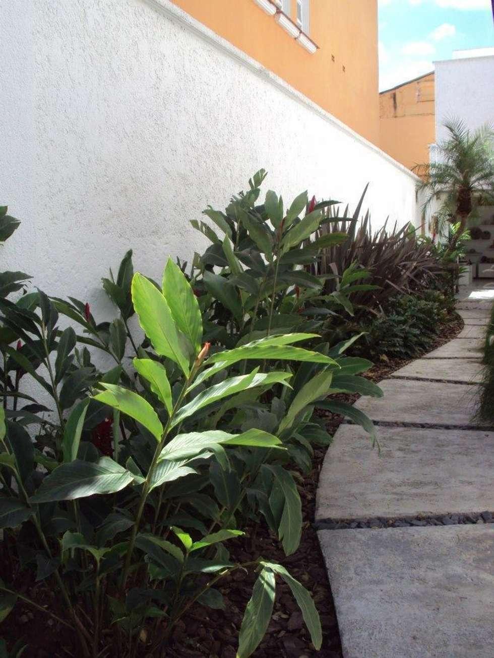 Jardins tropicais por homify
