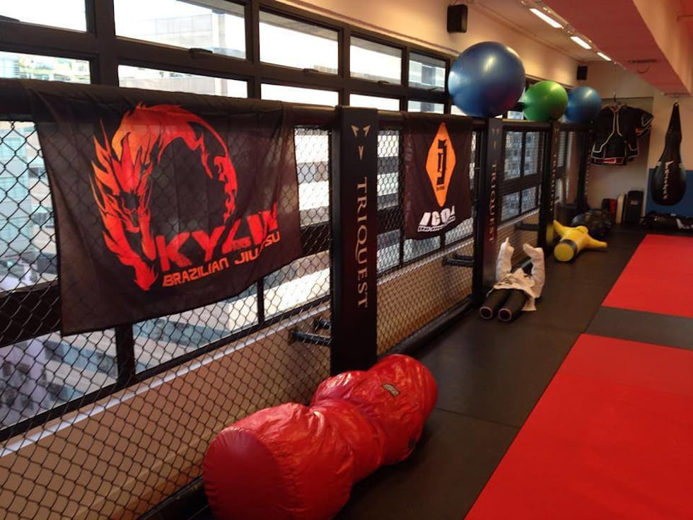 Cage wall: modern Gym by Oui3 International Limited