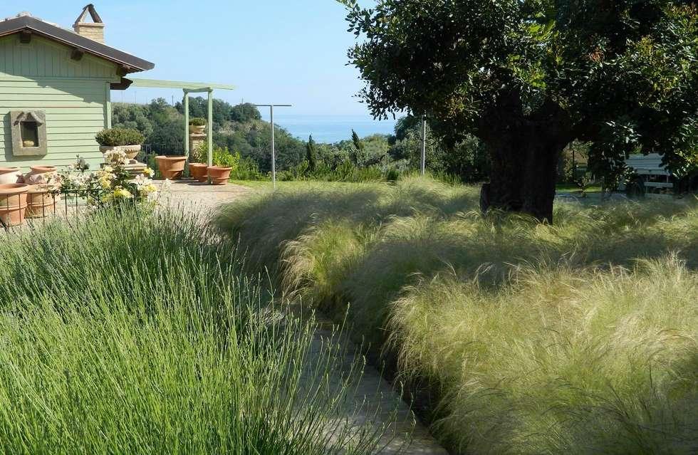 Giardini di campagna: giardino in stile in stile moderno di lucio