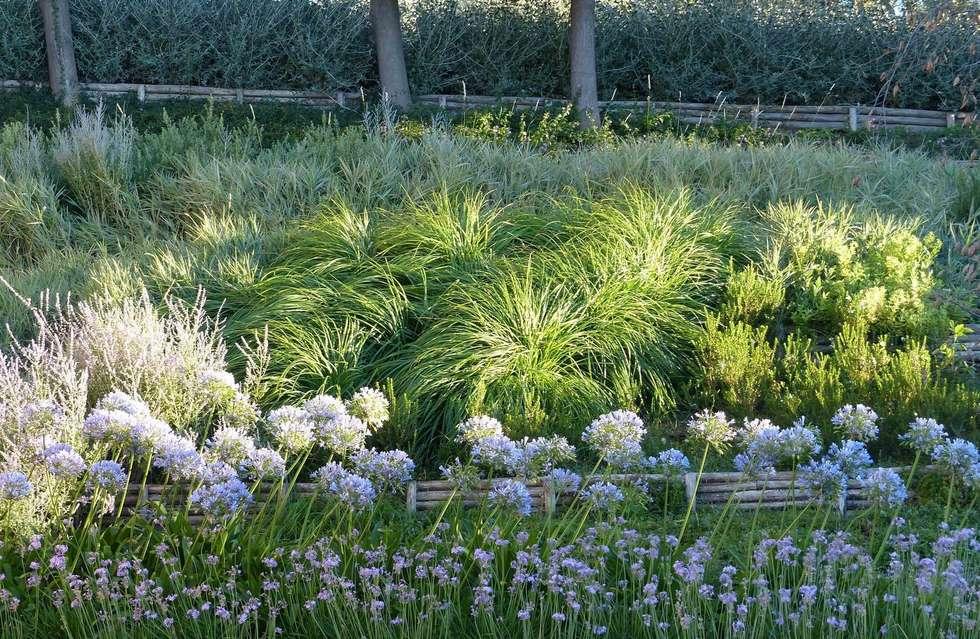 Giardini di campagna: giardino in stile in stile mediterraneo di
