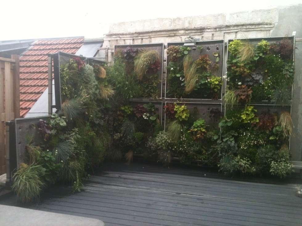 Mur végétale de la terrasse: Maisons de style de style eclectique par AGENCE JULIETTE VAILLANT ARCHITECTE
