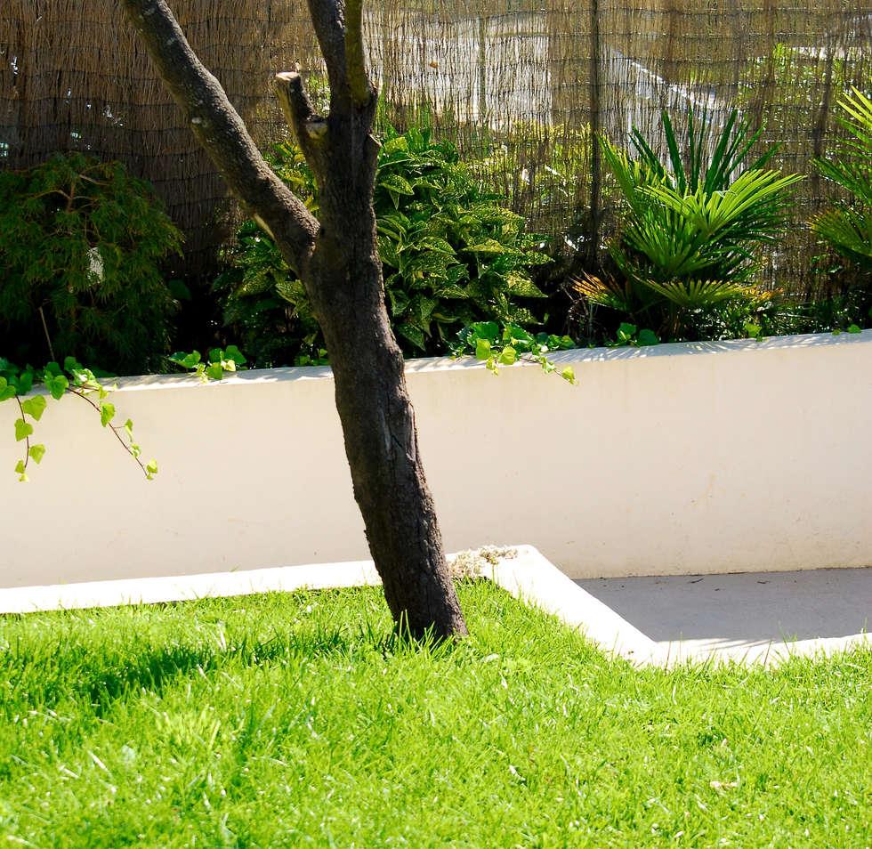 Jardin à Morgat:  de style  par A3PAYSAGE