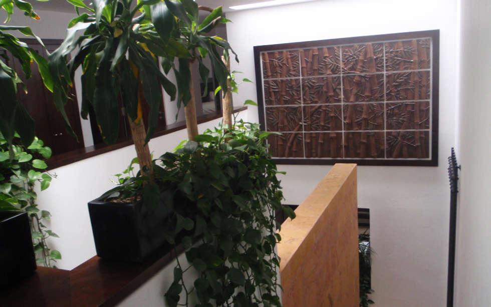 Fotos de decoraci n y dise o de interiores homify for Murales decorativos para interiores