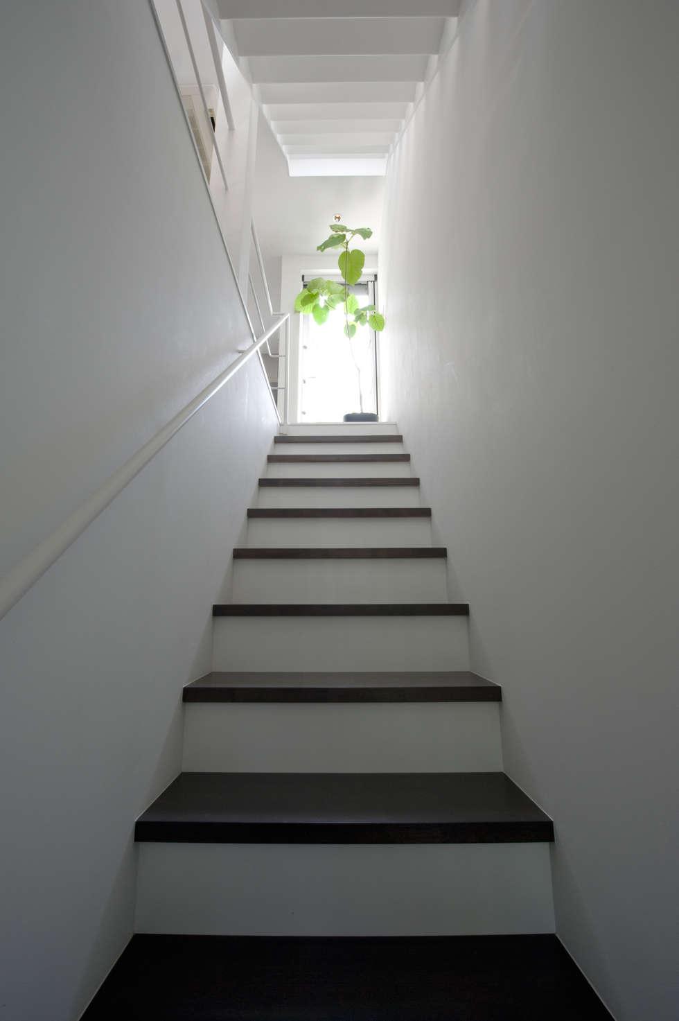 階段(1F~2F): 余田正徳/株式会社YODAアーキテクツが手掛けた廊下 & 玄関です。