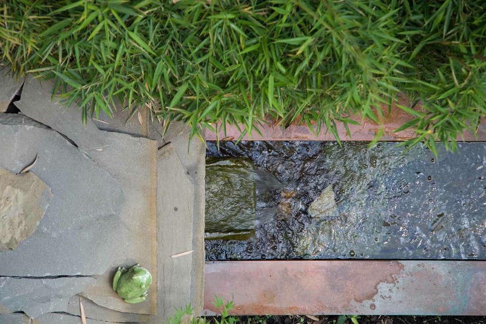 Idee arredamento casa interior design homify - Giardino delle ninfee ...