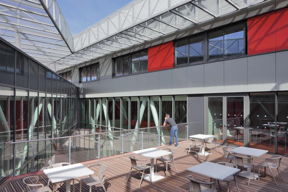 Patio triangulaire: Ecoles de style  par  Hellin Sebbag architectes associés