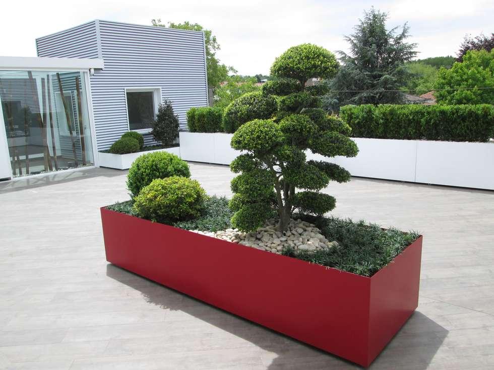 Terrazzo moderno: verde, bianco, rosso (foto 2): Terrazza in stile  di Midori srl