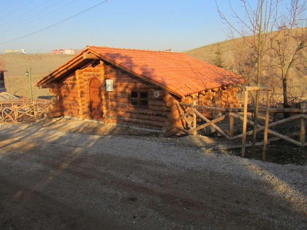 GÖZDE MOBİLYA – Tomruk Ev: modern tarz Evler
