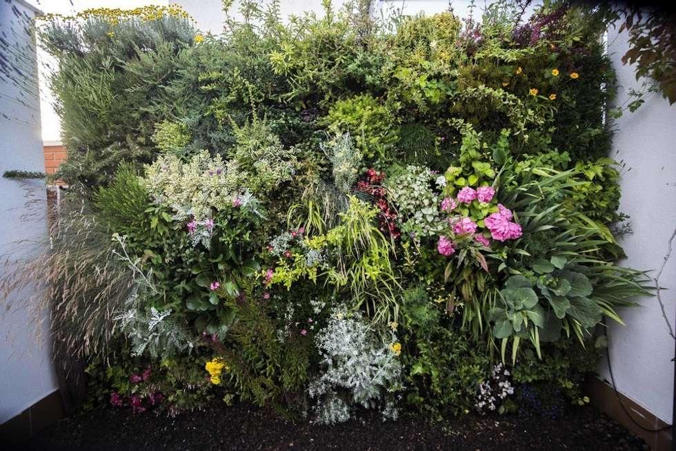 Jardines de estilo mediterraneo por thesustainableproject