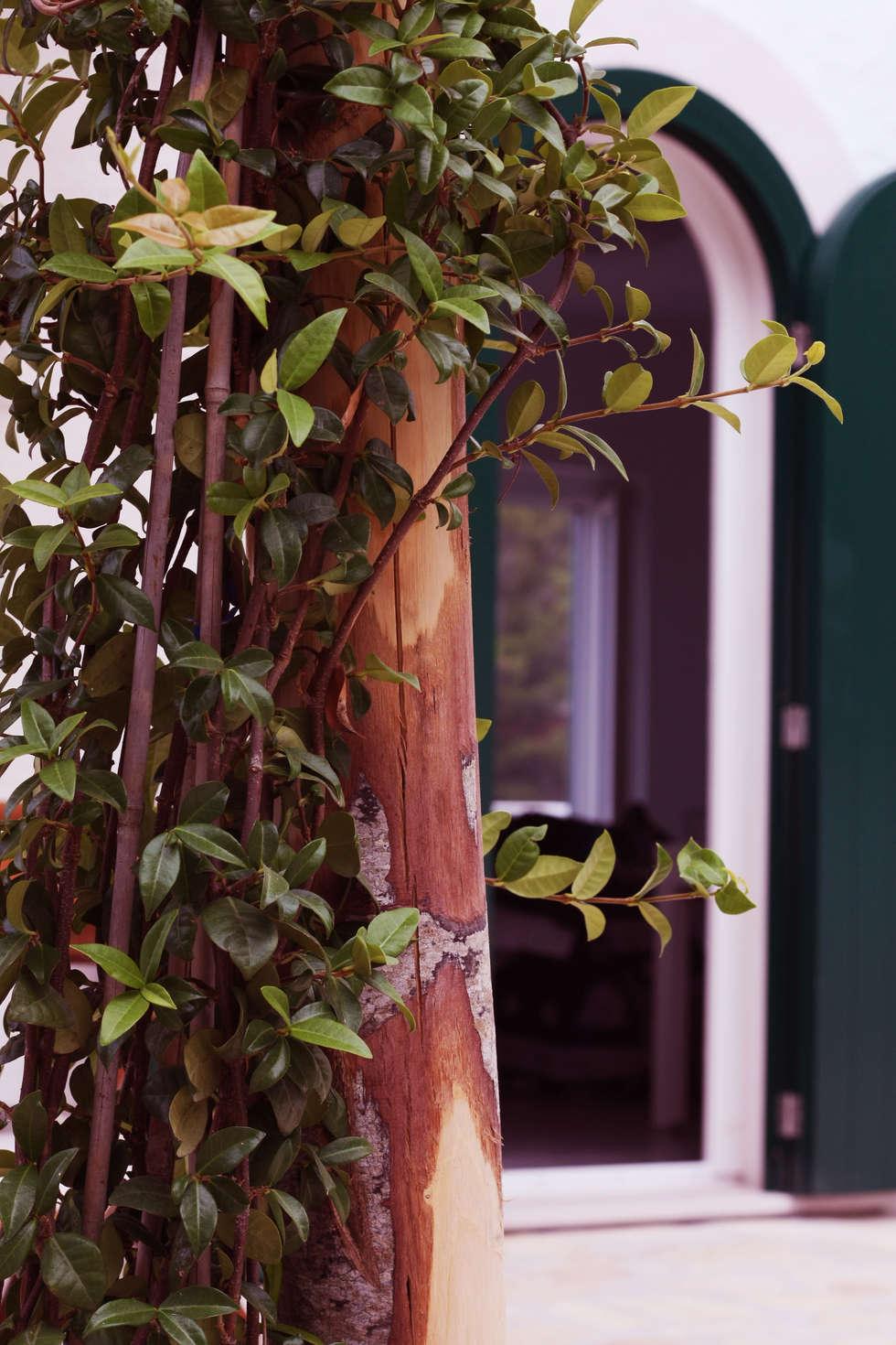 Colori: Giardino in stile in stile Mediterraneo di Durango Studio di architettura e paesaggio