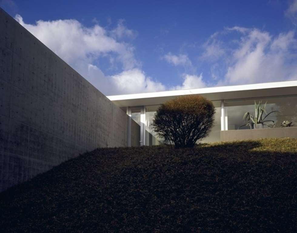 伊豆高原の家: 水谷壮市が手掛けた家です。