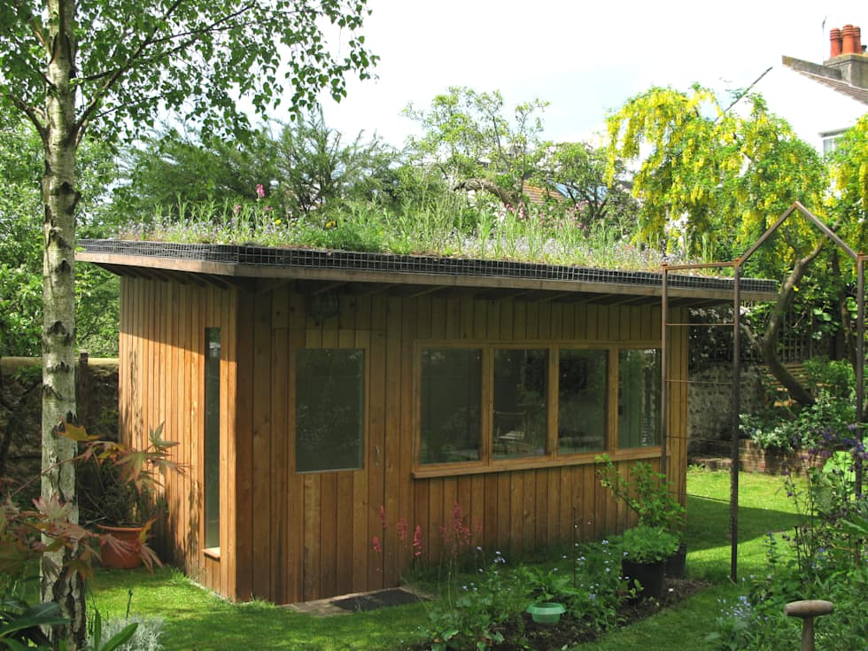 Artists' studio with green roof: modern Garden by Organic Roofs