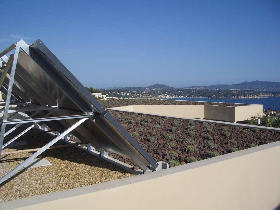 Un toit végétalisé de lavandes : Jardin de style de style Moderne par Vanessa Cottin
