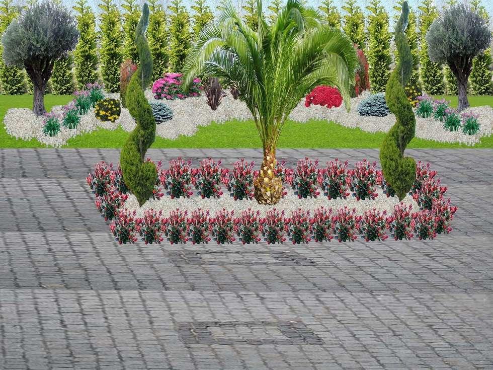 Çisem Peyzaj Tasarım – Sapanca: tropikal tarz tarz Bahçe