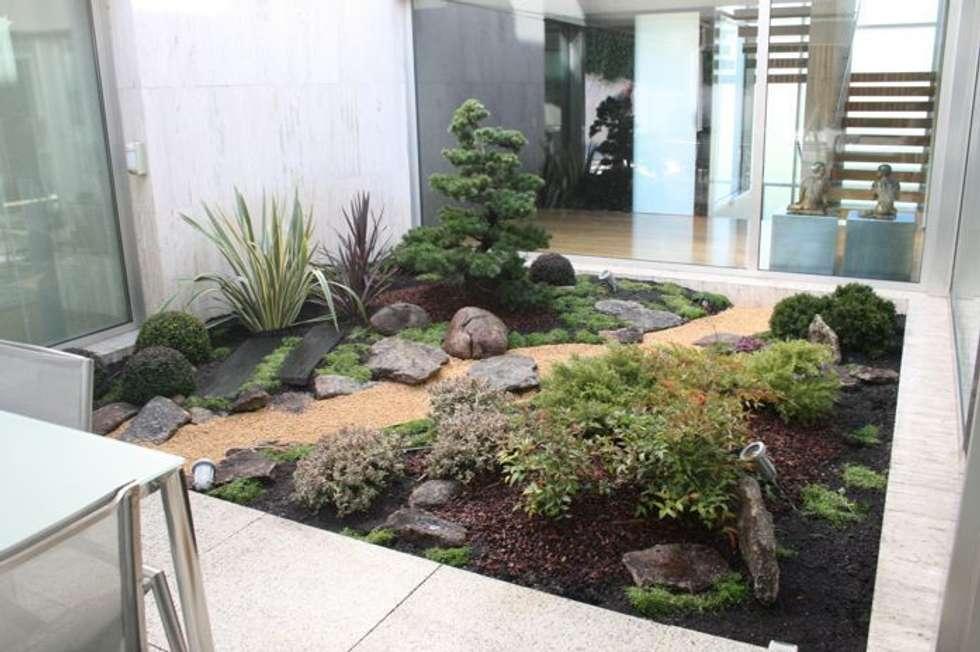 Jardin japones con niwaki jardines japoneses de estilo de for Decoracion jardin japones