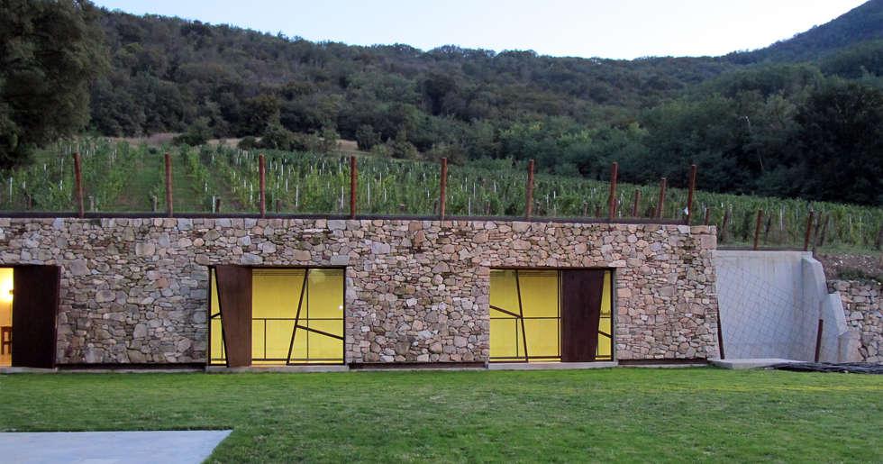 vista soppalco cantina: Cantina in stile In stile Country di GRISDAINESE