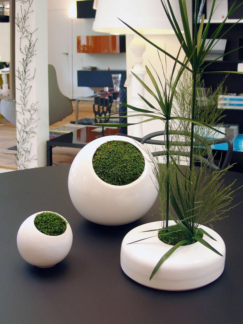 Design végétal: Salle à manger de style de style Minimaliste par Adventive