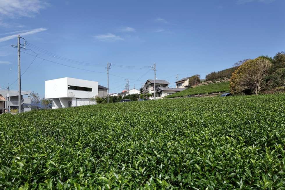 遠景: 久保田正一建築研究所が手掛けた家です。