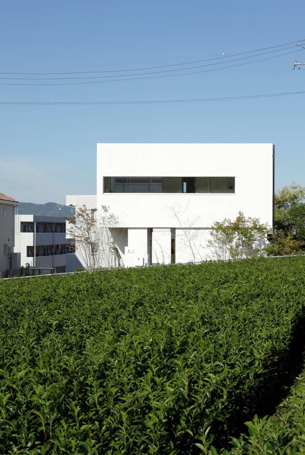 東面: 久保田正一建築研究所が手掛けた家です。