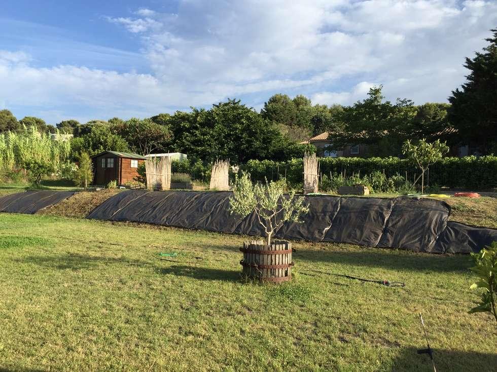 Aménagement talus: Jardin de style de style Méditerranéen par In&Out Garden