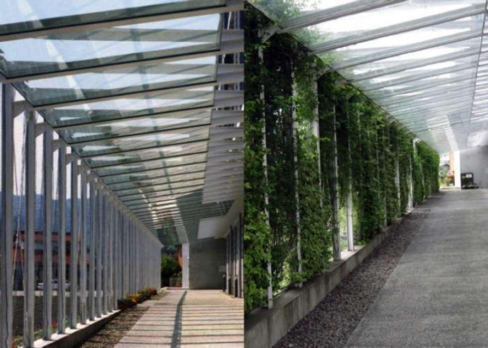 アプローチ: 株式会社ヨシダデザインワークショップが手掛けた廊下 & 玄関です。