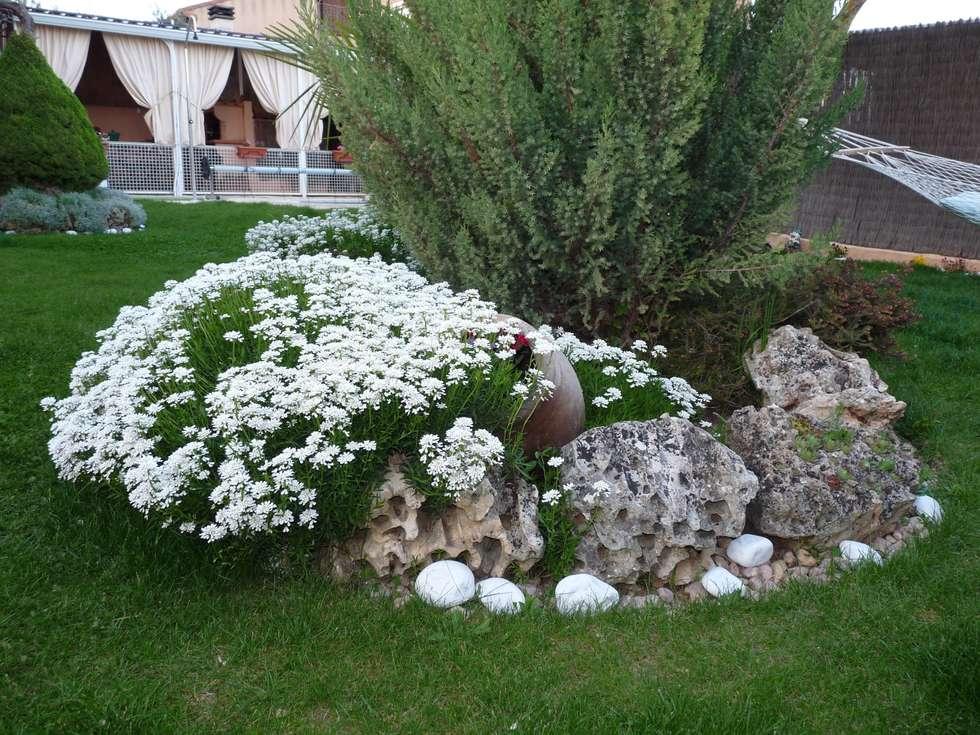 gaviones decorativos para el jard n y jardiner a Fotos de decoraci n y dise o de interiores homify Piedra para jardineria