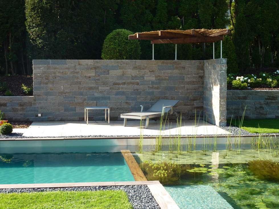 Gemütlicher Sitzplatz am Pool: moderner Pool von Maute GmbH & CO KG