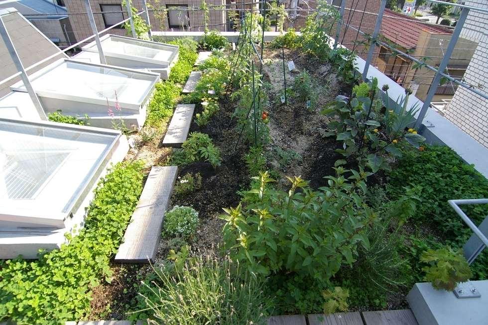 屋上菜園のある家: ARC DESIGNが手掛けたベランダです。