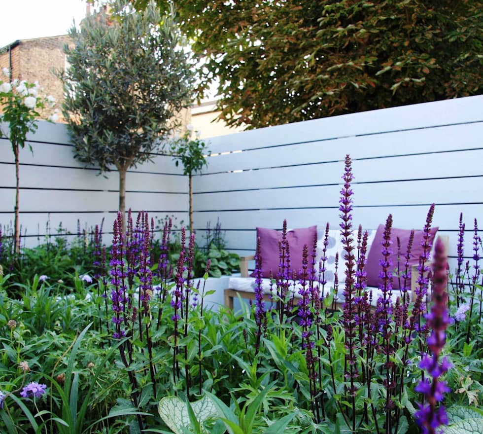 Small urban garden: modern Garden by Ruth Willmott