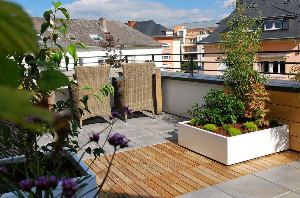 Petit jardin sur balcon: Terrasse de style  par ATELIER SO GREEN