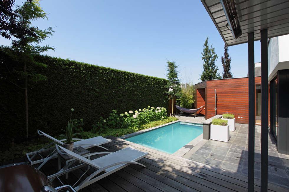 Zwemmen en zonnebaden: moderne Tuin door Stoop Tuinen