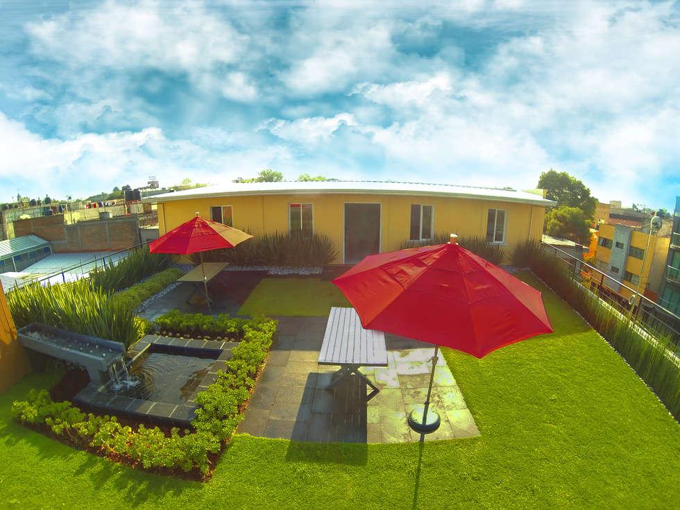 Azotea Verde de 213 m2 en la empresa Melcsa para el uso de los empleados.: Terrazas de estilo  por Azoteas Verdes