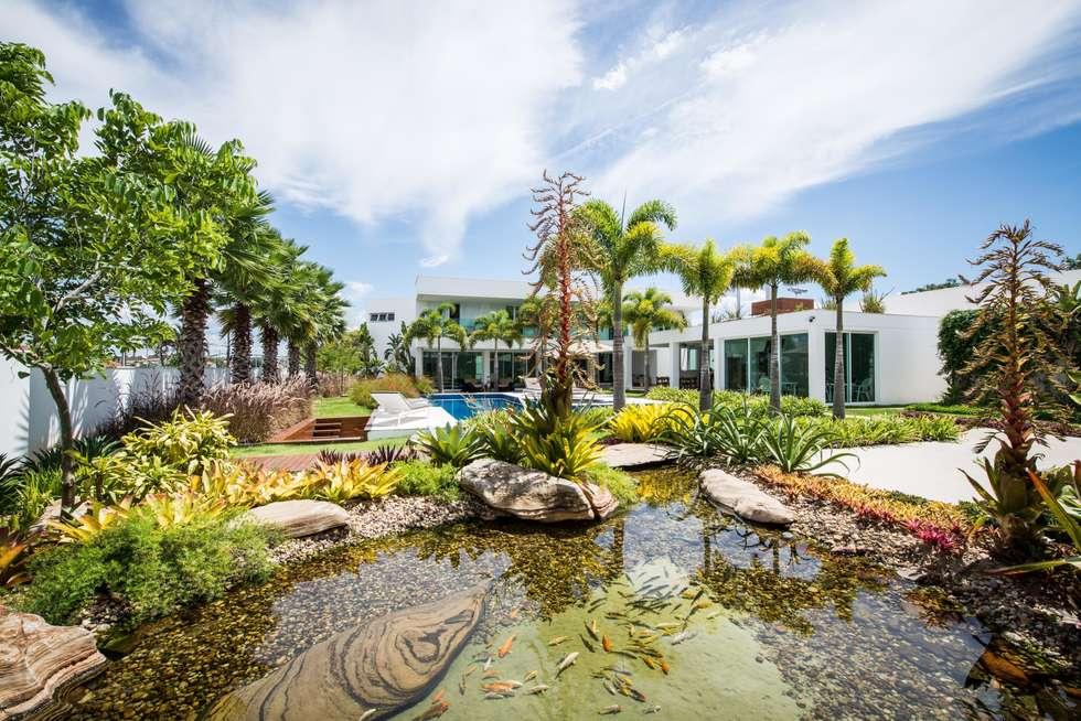 Jardim Tropical: Jardins modernos por ricardo pessuto paisagismo