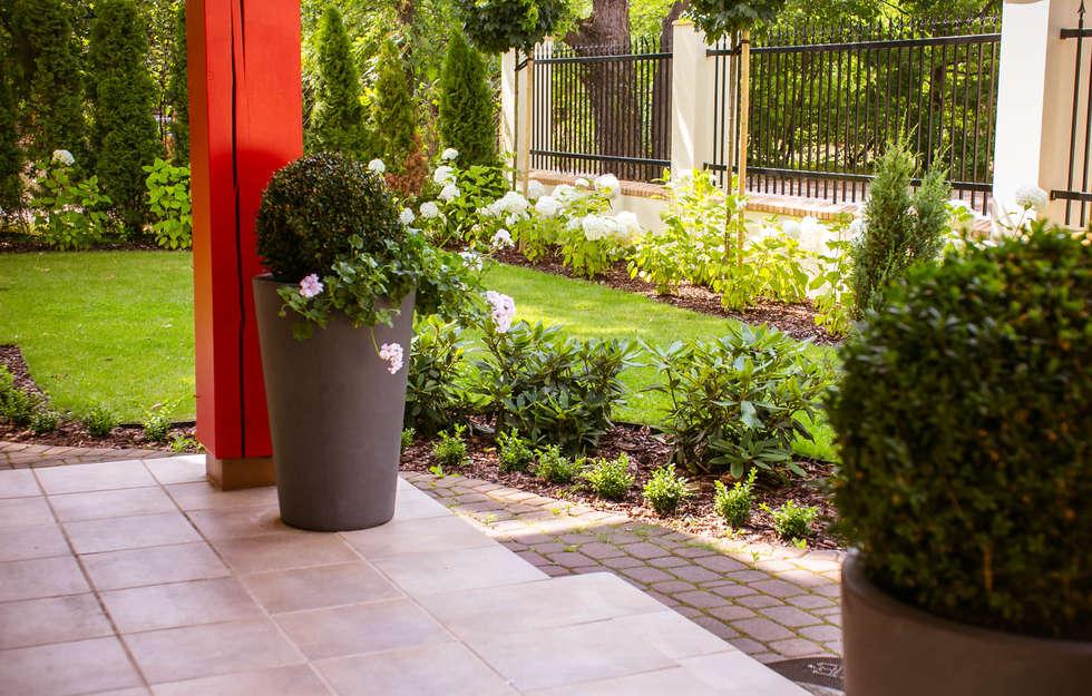 Ogród frontowy: styl , w kategorii Ogród zaprojektowany przez Miejskie Ziele