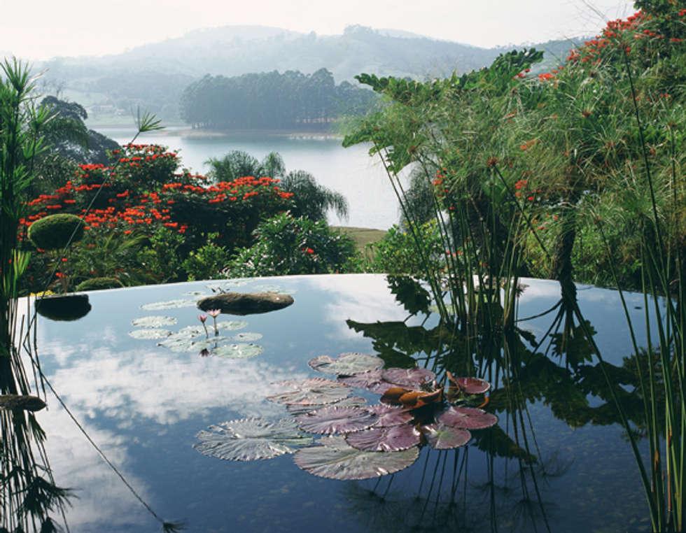 Reflexo do Céu.: Jardins rústicos por Eduardo Luppi Paisagismo Ltda.