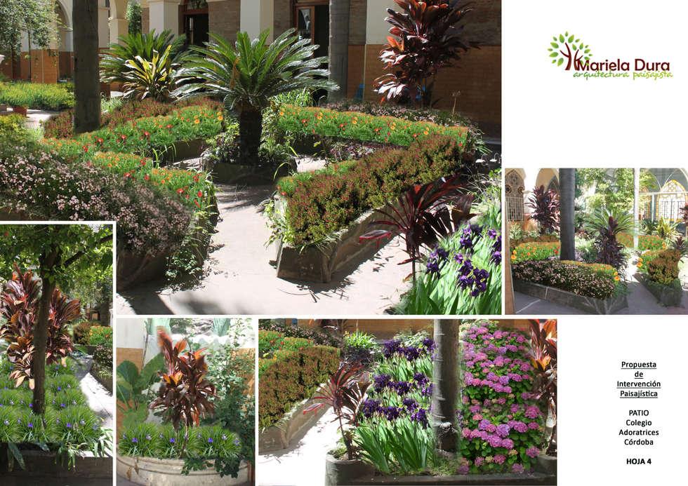 HOJA 4 y 5: PATIO IIIB – CANTERO CENTRAL CICA: Jardines de estilo clásico por MARIELA DURA ARQUITECTURA PAISAJISTA