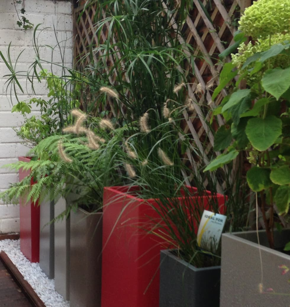 Bacs IMAGE'IN Hauts en couleurs !: Terrasse de style  par ATELIER SO GREEN