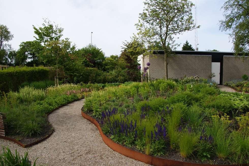 Cortenstaal: moderne Tuin door Ontwerpstudio Angela's Tuinen