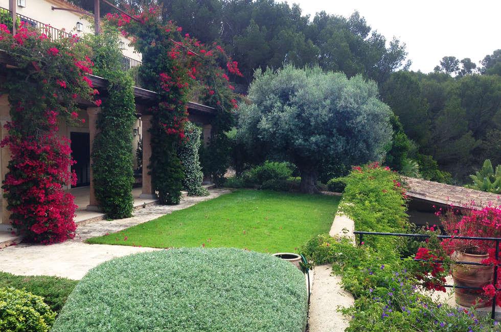 Fotos de decoraci n y dise o de interiores homify for Fotos de jardines preciosos