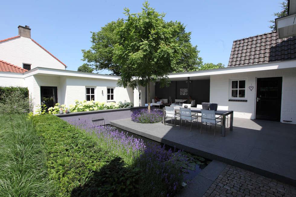 Koivijver aan het terras: moderne Tuin door Stoop Tuinen