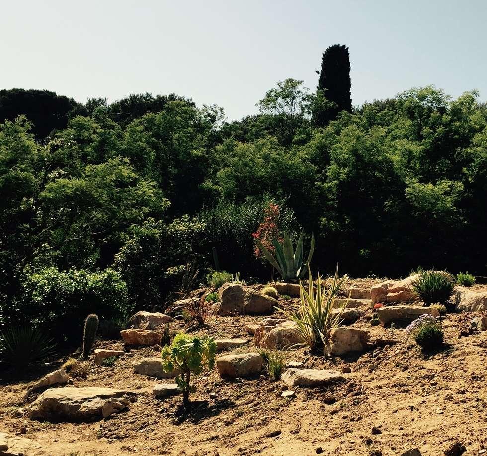 Enrochement: Jardin de style de style Méditerranéen par In&Out Garden