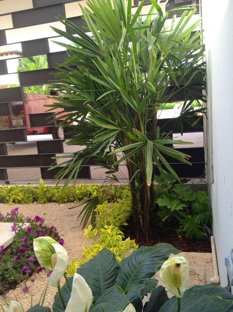 Casa Z-26. Jardín interior con celosía metálica.: Paredes de estilo  por EcoEntorno Paisajismo Urbano