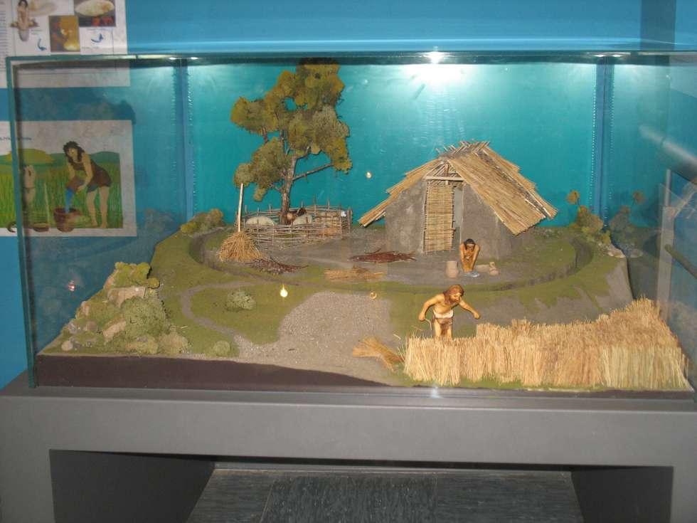 Museo Civico di Geopaleontologia e Preistoria dei Colli Albani: Sala multimediale in stile  di Gotti Sergio
