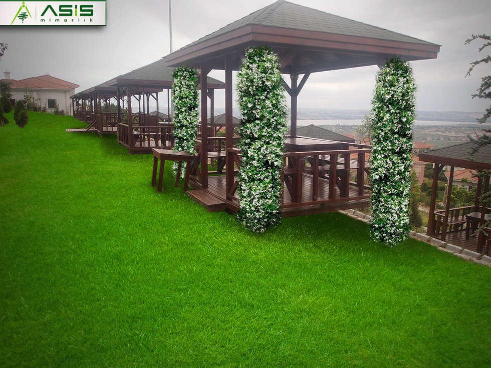 asis mimarlık peyzaj inşaat a.ş. – Pelican Hill Residance: asyatik tarz tarz Bahçe