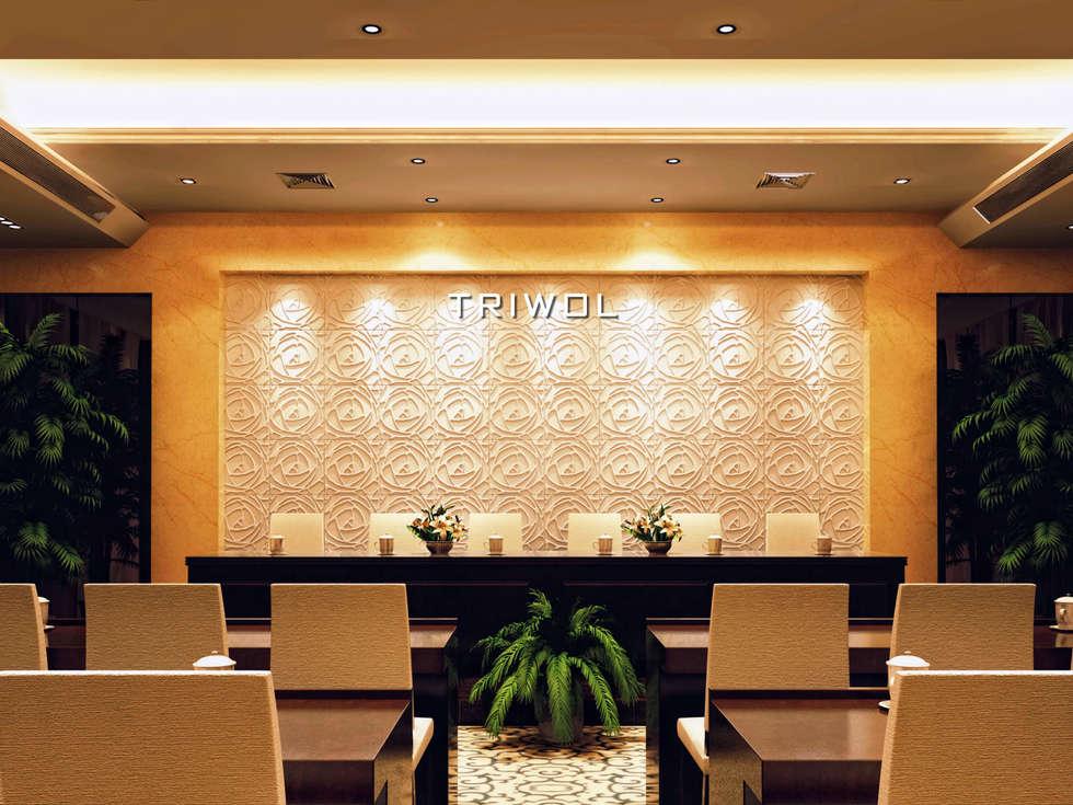Group Enerji Yapı Dekorasyon – TRIWOL PEONY 3D DUVAR PANELİ:  tarz Duvarlar