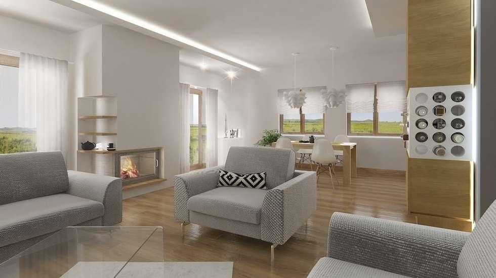 Nowoczesny dom jednorodzinny: styl , w kategorii Salon zaprojektowany przez D2 Studio