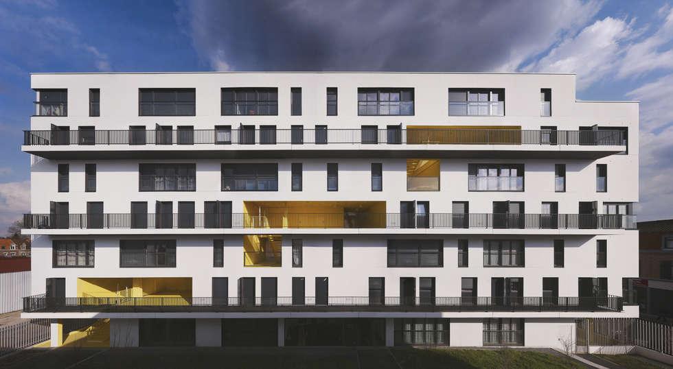 6_VUE FRONTALE COTE JARDIN:  de style  par sophie delhay architectes