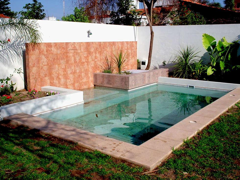 piscinas familiares piletas de estilo moderno por On piletas patios chicos