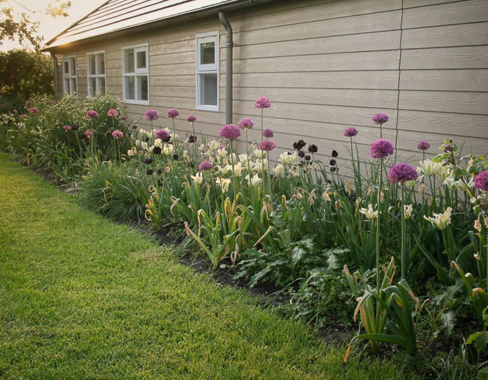 Bollen: landelijke Tuin door Boekel Tuinen